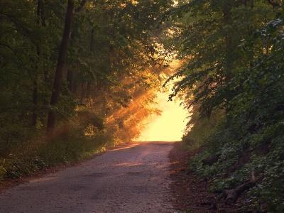 sunlight-166733_400x300